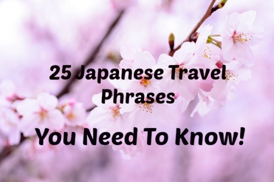 25-japanese-travel-phrases-you-need-to-know