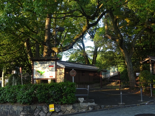hillside-kyoto