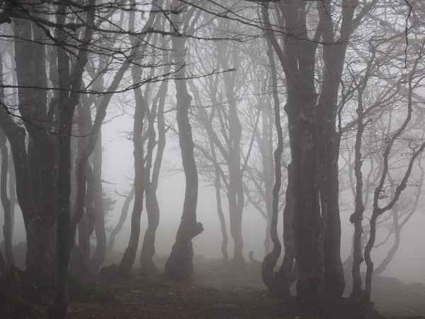 spooky-saturday