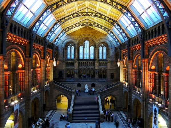 visit-the-natural-history-museum
